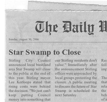 star-swamp-fodey